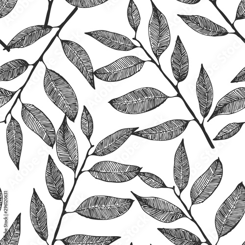fototapeta na szkło Seamless vector background with hand drawn leaves, eucalyptus pattern
