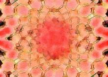 Presewatercolor Colorful Digit...