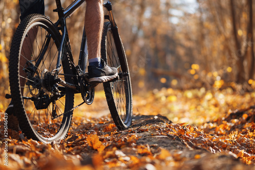 Vászonkép Male cyclist riding a bike in the autumn forest in warm weather