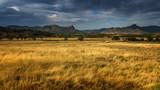 Fototapeta Sawanna - panorama of steppe landscape mountains on the horizon, Crimea