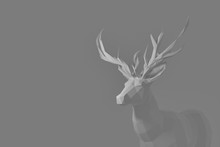 Male Deer Antler Wallpaper 3d Render