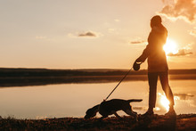 Unrecognizable Woman Walking With Dog Near Pond