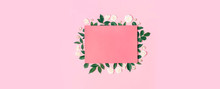 Flowers Composition. Pink Blan...