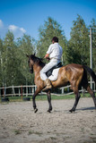 Fototapeta Konie - Horseman on horseback, ranch, horse farm. Golop, riding lessons.