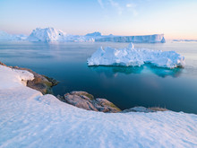 Arctic Icebergs In Greenland
