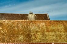 Stare Dachy W Miluzie, Na Jedn...