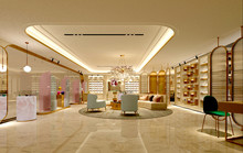 3d Render Of Showroom, Shop In...