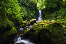 Waterfall In Lamington National Park