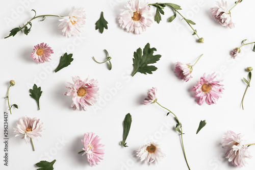 Keuken foto achterwand Bloemen floral pattern. beautiful pink chrysanthemums and green leaves on a white background. simple flat lay composition