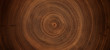 canvas print picture - Old wooden oak tree cut surface. Detailed warm dark brown and orange tones of a felled tree trunk or stump. Rough organic texture of tree rings with close up of end grain.