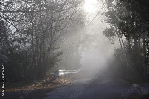 Foto op Aluminium Begraafplaats 朝霧の中 朝陽に輝くガードレールです