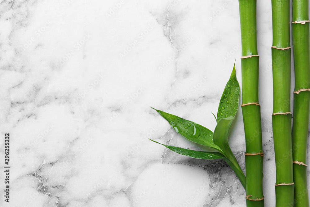 Fototapety, obrazy: Green bamboo stems on white marble background, top view. Space for text