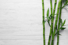 Green Bamboo Stems On White Wo...