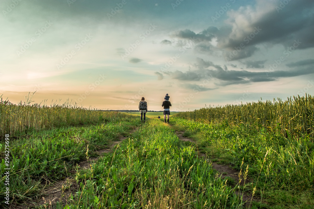 Fototapety, obrazy: The family goes on a road in the middle of the field at sunset