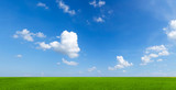 Fototapeta Na sufit - sky with clouds and green field background panorama