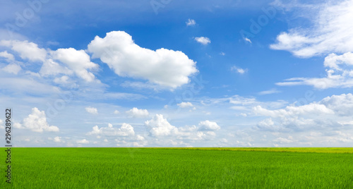 Poster Pres, Marais sky and green field background panorama