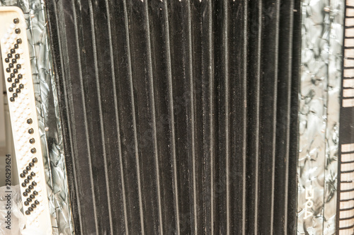 The old rare accordion buttons close up view. Canvas Print