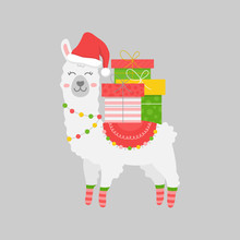 Christmas Llama Vector Illustration. Cute Festive, Seasonal, Trendy Xmas White Alpaca, Animal With Colorful Gifts On Back. Isolated Cartoon Print Graphic, Character.