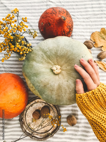 Hand in yellow sweater holding pumpkin and nuts,  flowers, fall leaves on rustic table, flat lay. Fall decor and arrangement on table. Autumn harvest. Thanksgiving concept. Wall mural