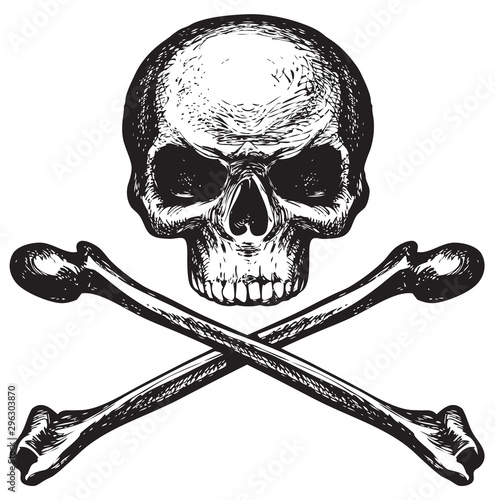 Sketch vector illustration, hand drawn human skull and crossbones isolated on white background. Jolly Roger. Pirate symbol or danger warning sign - 296303870
