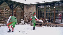 Couple Of Elves Are Playing Sn...