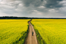 A Man Standing Alone In The Rapeseed Field On A Countryside Road Among Yellow Flowers Under A Dark Cloudy Sky. High Angle Natural Landscape In Kemerovo Region, Russia