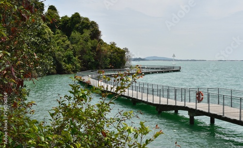 Fotomural Beautiful boardwalk on Singapore island: Pulau Ubin Chek Jawa Boardwalk