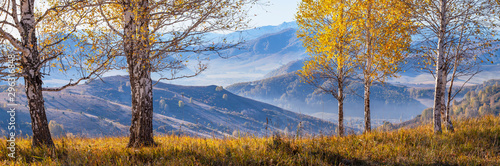 Scenic autumn view, sunny morning. Grass and birch trees in the foreground and mountains in the distance.