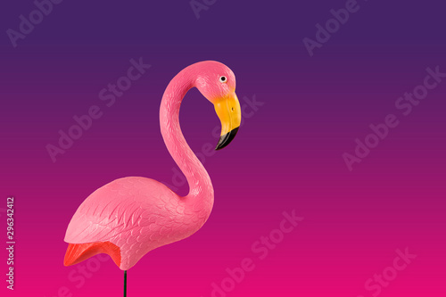 pink flamingo on a pink background