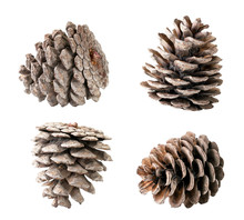 Set Of Christmas Tree Cones Cl...