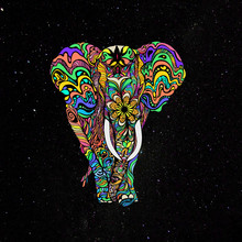 Not A Circus Elephant By #Bizz...