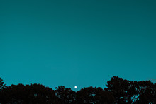 View Of Moon Over Trees At Dusk