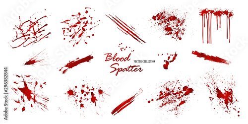 Set of various blood or paint splatters isolated on white background Canvas Print