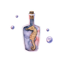 Watercolor Magic Glass Bottle With Sea Horse, Bubbles. Hand Drawn Illustration Isolated On White. Template Is Perfect For Marine Design, Fabric Textile, Poster, Icon, Emblem, Card Making