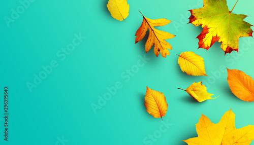 Fotografía  Goldener Herbst
