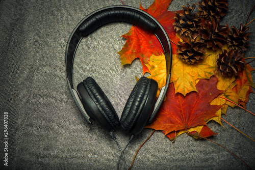 earphones with colorful maple leafs inside on rough fabric texture - 296407828