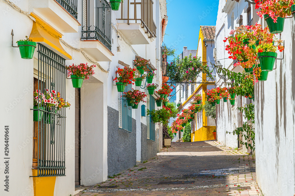 Fototapeta The beautiful Estepona, little and flowery town in the province of Malaga, Spain.