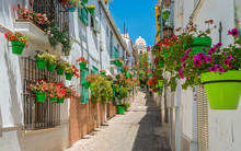 The Beautiful Estepona, Little...