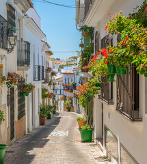 The beautiful Estepona, little and flowery town in the province of Malaga, Spain.