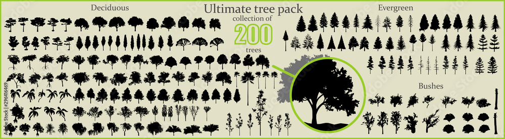 Fototapety, obrazy: Even More Ultimate Tree collection, 200 detailed, different tree vectors