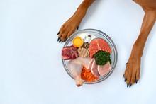 Natural Raw Organic Dog Food I...