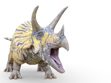 Triceratops Is Calling On White Background