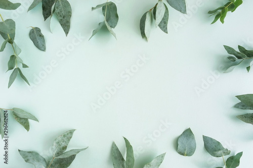 Wall Murals Floral green eucalyptus leaves, branches frame on a pastel mint color background. flat lay, top view. copy space