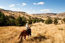 Cow-Boy Et Cheval Western Dans Les Collines De L'ouest Américain