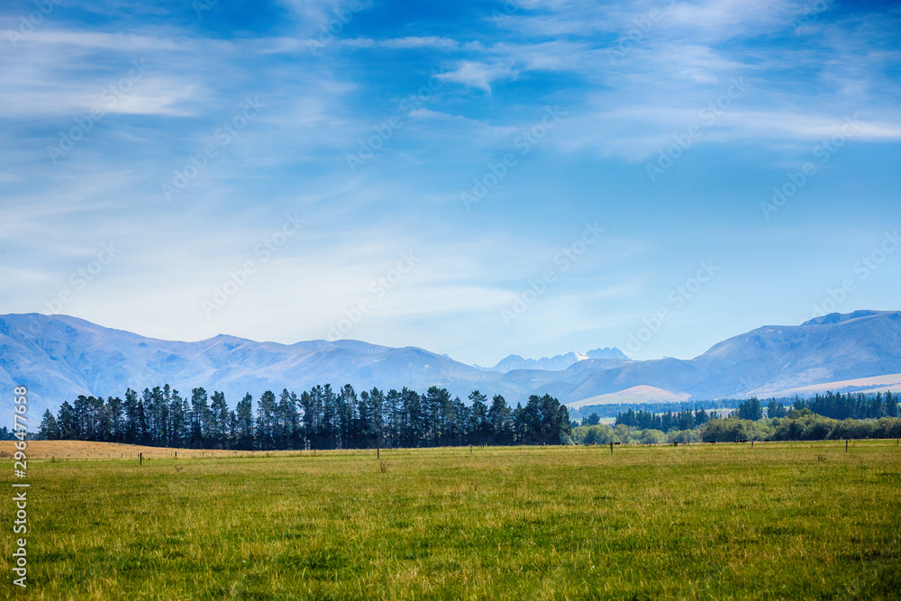 Fototapety, obrazy: Beautiful Countryside at Farm Agriculture in South Island New Zealand