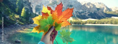 Fototapeta  bunte Herbstblätter am See