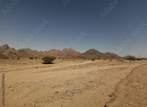 Foto op Plexiglas Zandwoestijn Landscape of desert view on extreme heat weather. Travel concept