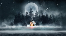 Winter Night Scene. Winter In ...