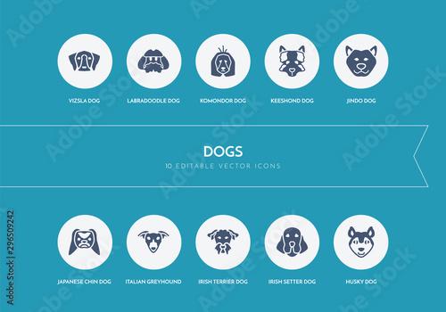 Tablou Canvas 10 dogs concept blue icons