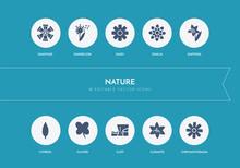 10 Nature Concept Blue Icons